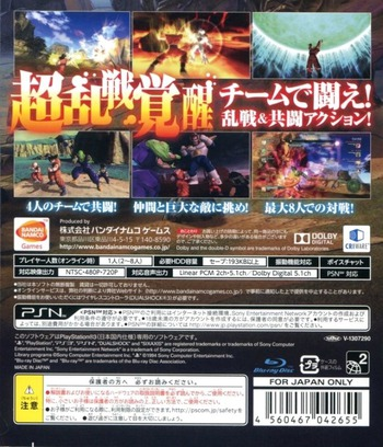 PS3 backM (BLJS10234)