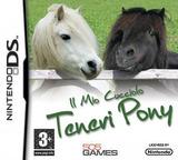 Il Mio Cucciolo Teneri Pony DS cover (CPOP)