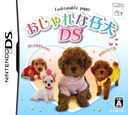 DS coverS (YNZJ)
