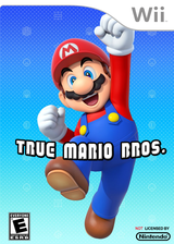 True Mario Bros. CUSTOM cover (SMNE48)