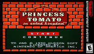 Princess Tomato in the Salad Kingdom VC-NES cover (FFLE)